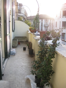 Terrace during