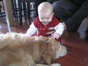 nice petting